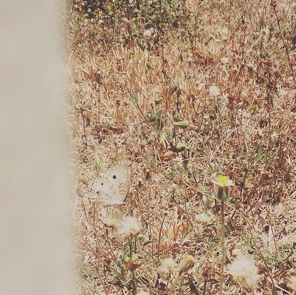 banesco blog_florencia alvarado instagram (3)