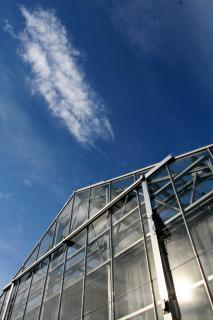 blog-banesco-energia-invernadero